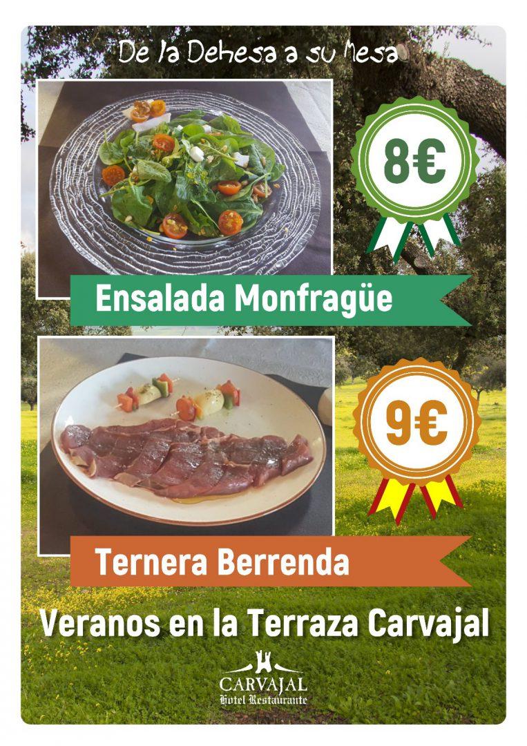 Verano en la Terraza Hotel Carvajal